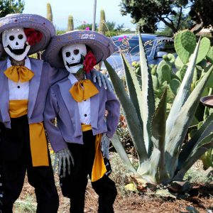 One of the many events that San Simeon puts on is the scarecrow festival