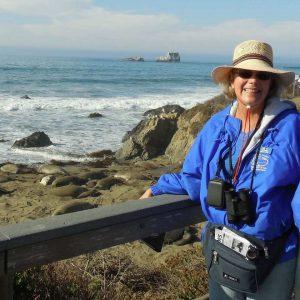 Abby Adams, Elephant Seal Docent