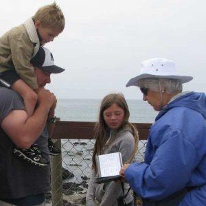 Polly Tatton, Elephant Seal Docent