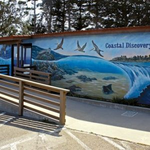 Coastal Discovery Center at San Simeon Bay