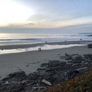 Walk the Beaches in San Simeon