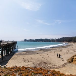 William R. Hearst State Beach in San Simeon, CA
