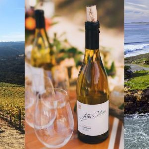 Wineries near San Simeon, CA