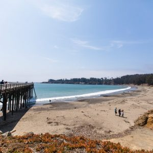Hearst State Beach, San Simeon Cove
