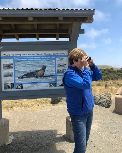 Jan Sprague, Elephant Seal Docent