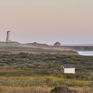 Piedras Blancas Light Station in San Simeon, CA