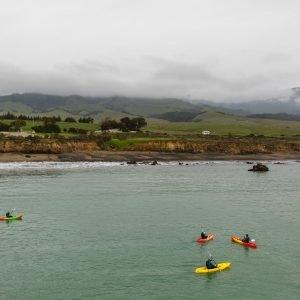 Kayak San Simeon